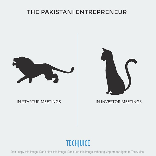 The Pakistani Entrepreneur 5