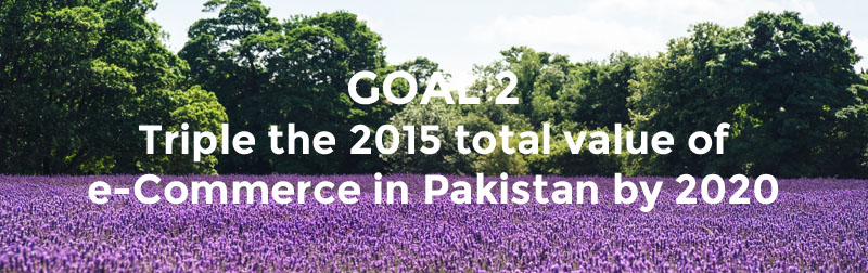 Goal 2 - Realising Digital Pakistan