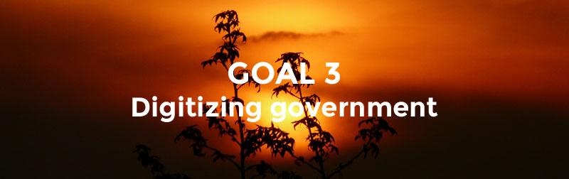 Goal 3 - Realising Digital Pakistan