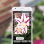 Google Lens Google Assistant