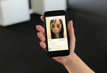 momo-whatsapp