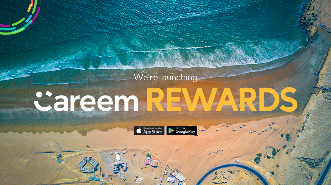 Pro Pakistani - Launch Banner