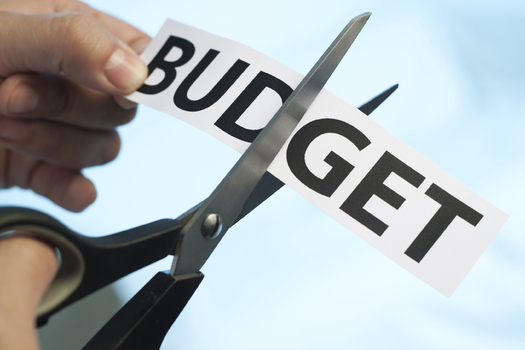 Budget-Cut-IT-Telecom-Pakistan-TechJuice