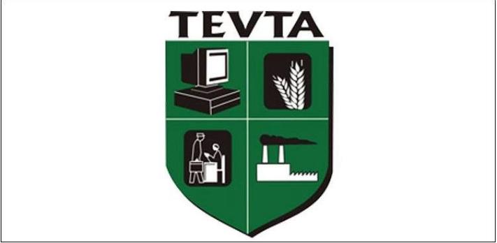TEVTA-5-Online-Courses-TechJuice